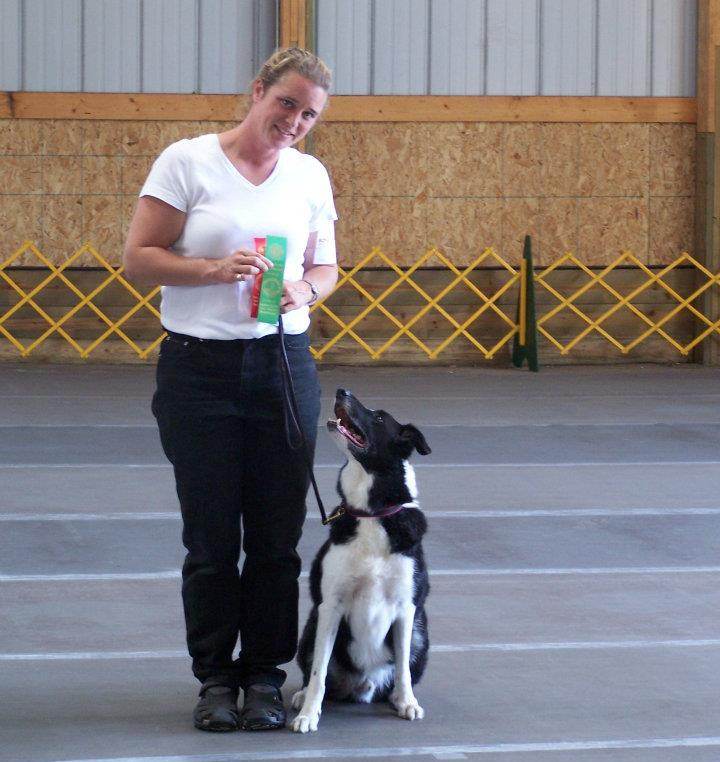 Dog trainer with prize ribbons and dog on leash looking up at her
